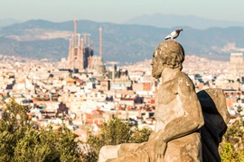 Blick auf Barcelona Taube sitzt auf einer Statue
