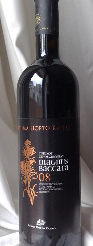Magnus Baccata 08
