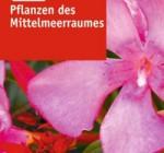 Pflanzen-des-Mittelmeerraumes