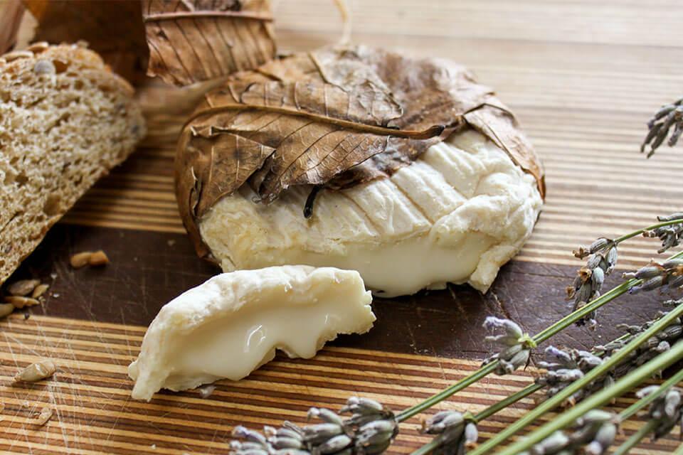 das Bild zeigt einen angeschnittenen, weichen Käse aus Banon