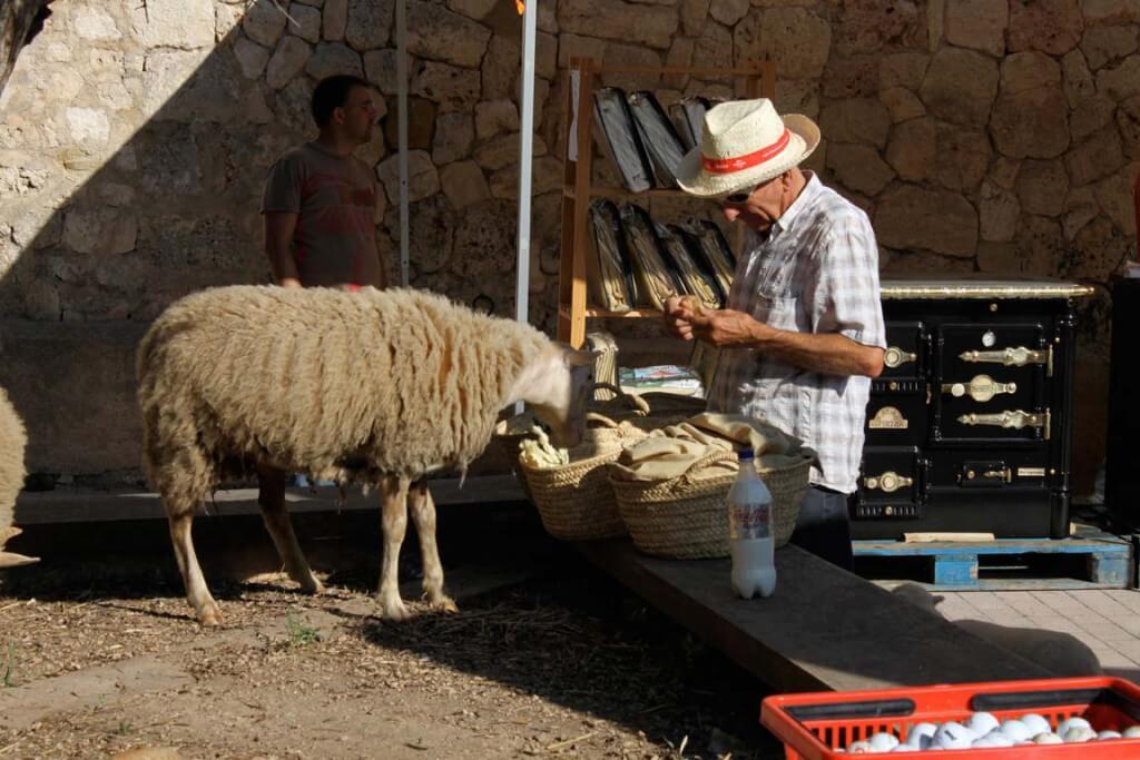 Das Bild zeigt einen Bauern mit einem Schaf