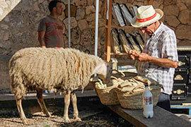 Das Bild zeigt einen Bauern und sein Schaf