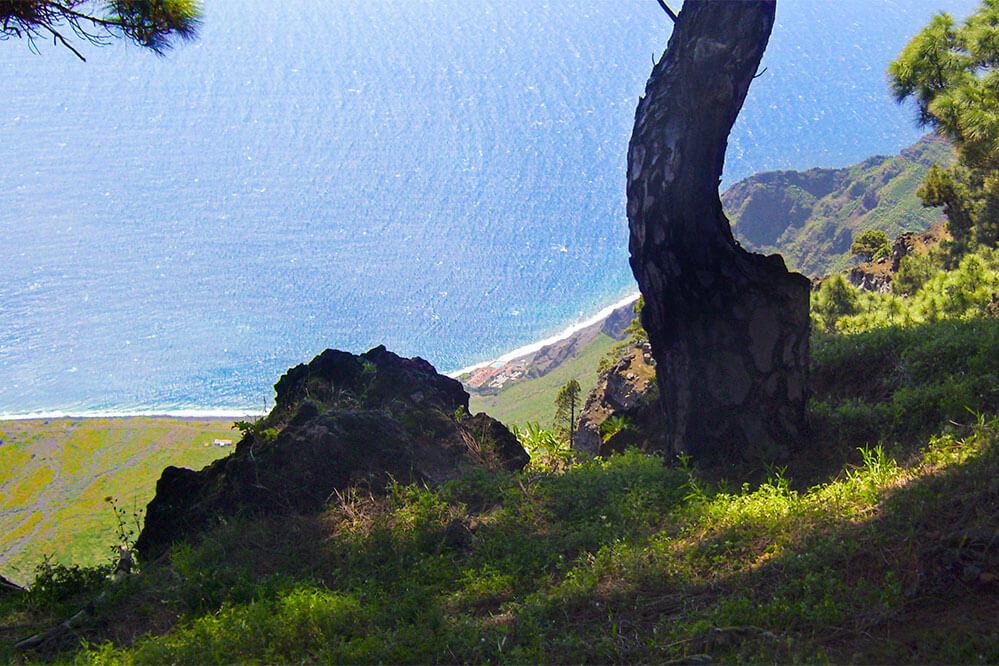 Das Bild zeigt den Blick von sehr weit oben auf das Meer, im Vordergrund ein Baum