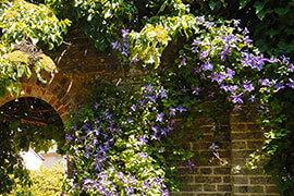 Tipps garten und pflanzen amb mediterran - Backsteinmauer im garten ...