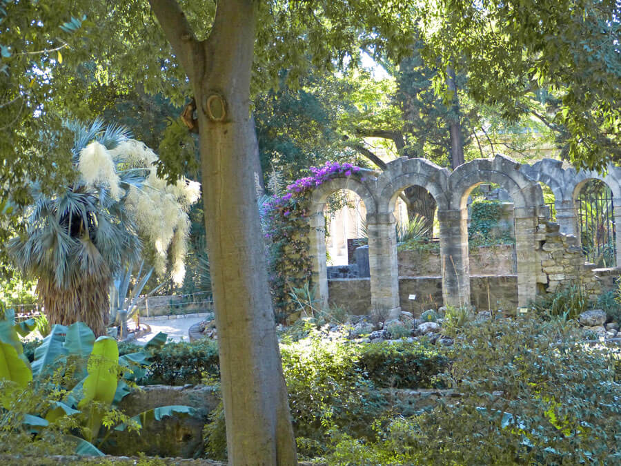jardin des plantes profondeur
