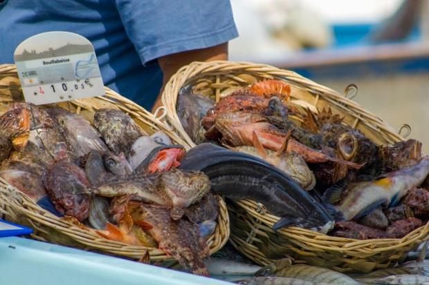 Bouillabaisse Fische © OTCM