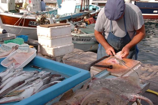 Fischmarkt Marseille © Vdm OTCM