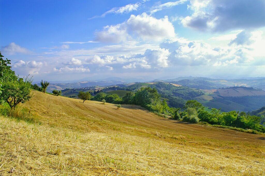 Landschaft Marken bei Fermo © Siegbert Mattheis