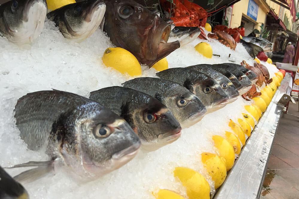 Mediterrane Ernährung Fisch © Siegbert Mattheis