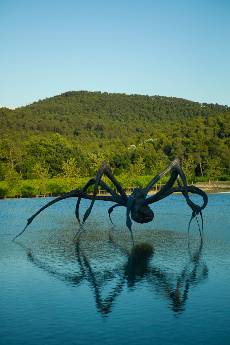 Chateau La Coste - Crouching Spider-The Easton Foundation
