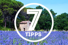 7-Tipps_provence
