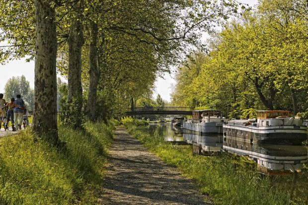 Canal du Midi - Toulouse-03