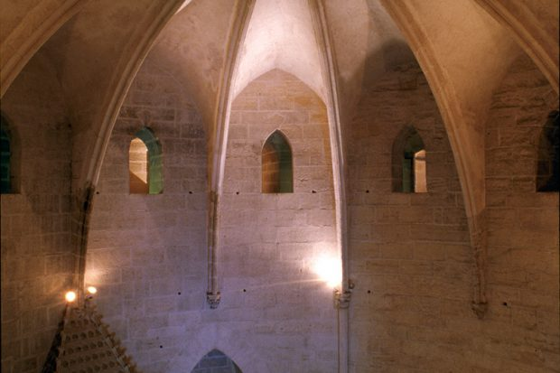 Die Türme von Aigues-Mortes-05