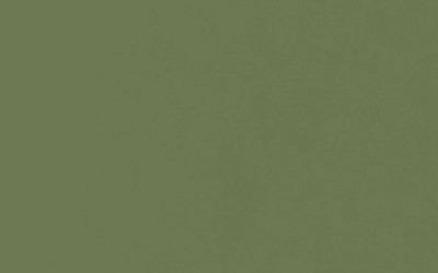 Mediterrane Farben Olivgrün
