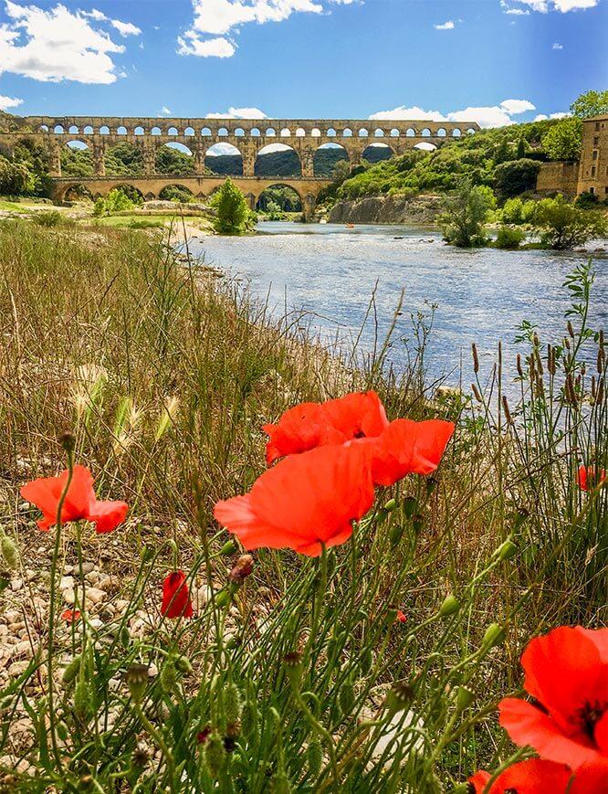 Pont du Gard mit blühendem Mohn