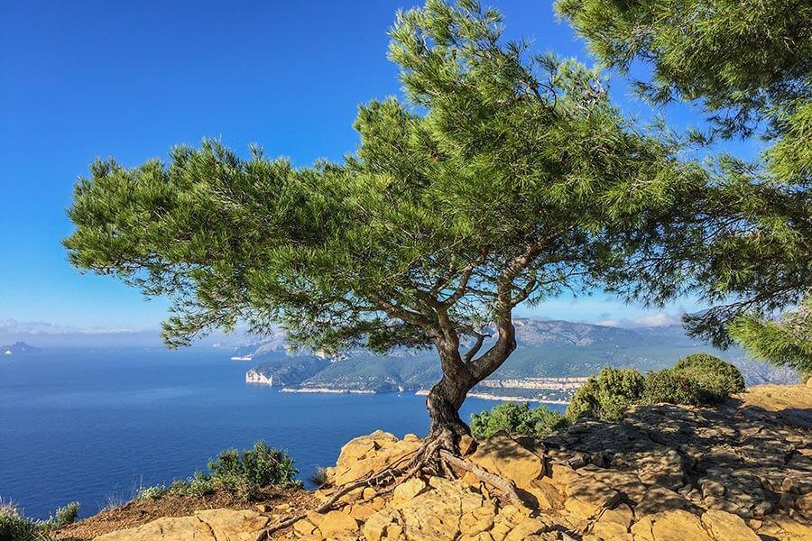 Blick von der Route des Crêtes auf das Meer