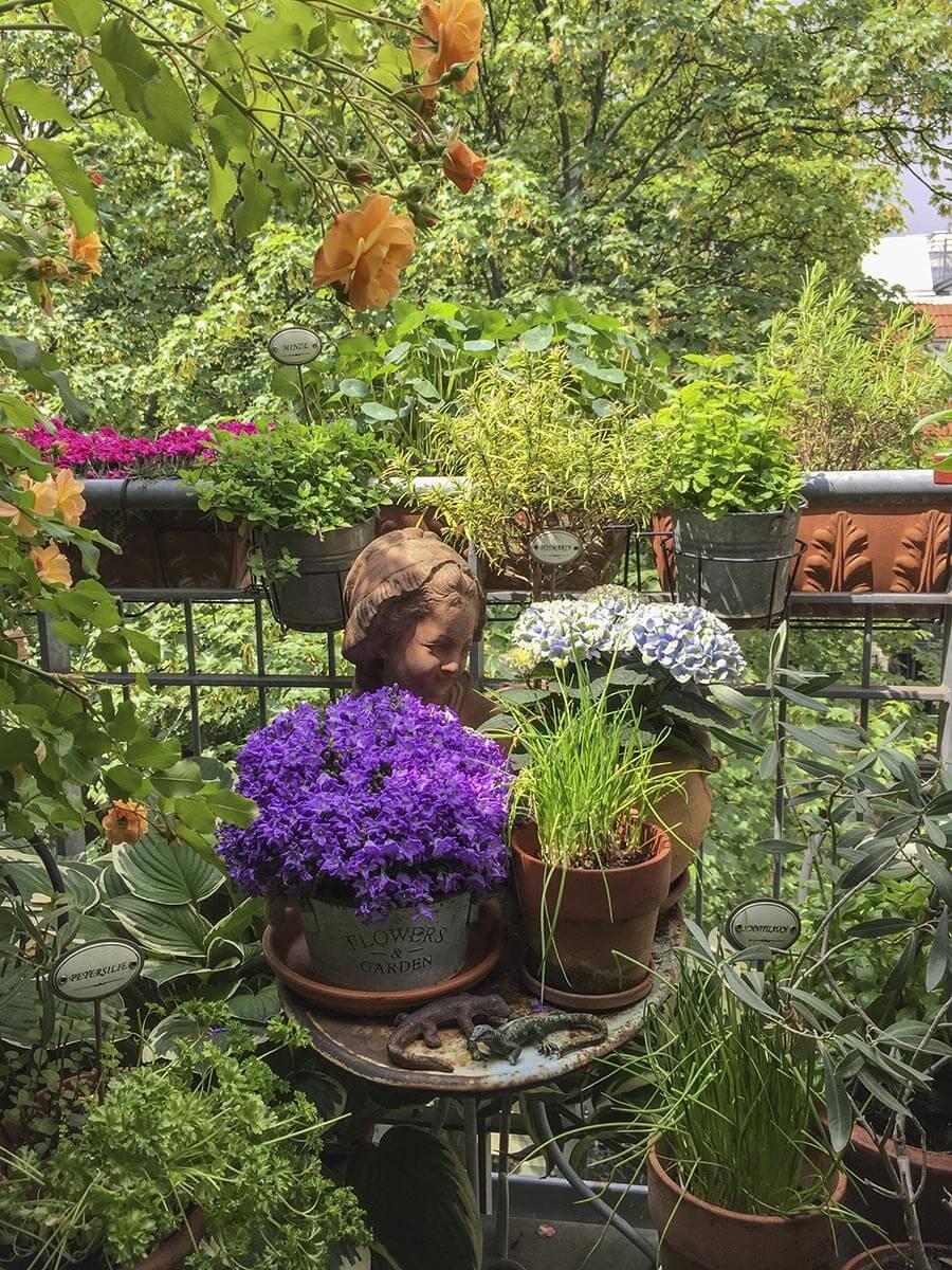 Auch auf kleinsten Balkonen kann man mediterranes Flair zaubern © Siegbert Mattheis