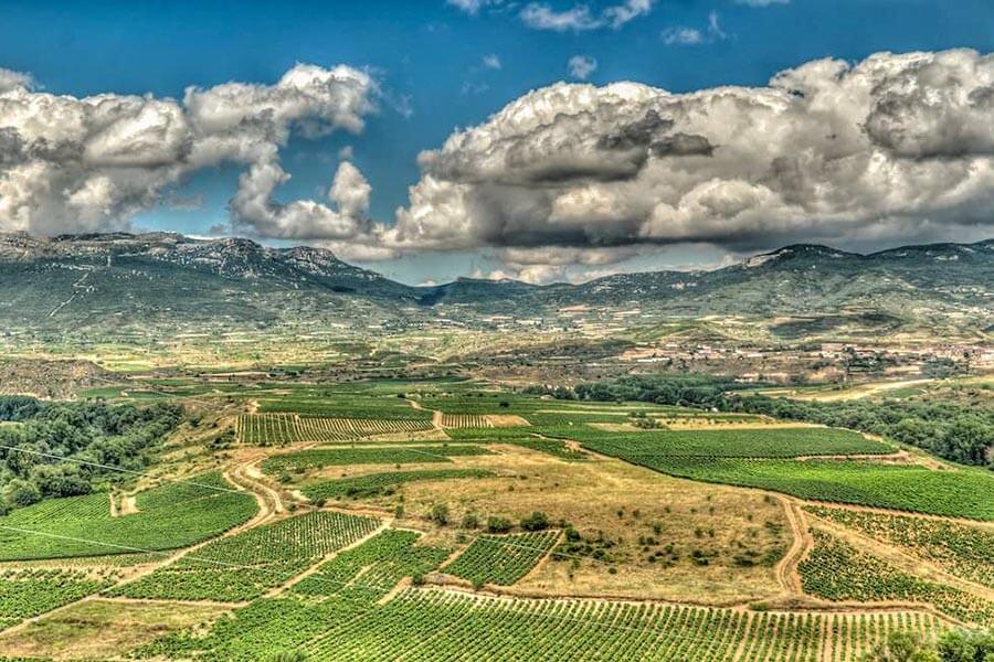 Blick von Briones auf das Rioja-Gebiet © Wikipedia