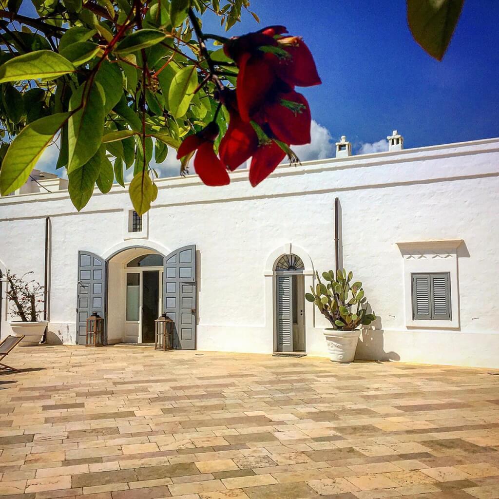 Großzügige Terrasse mit weiß gestrichenen Terracottatöpfen vor einer Masseria in Apulien © Siegbert Mattheis