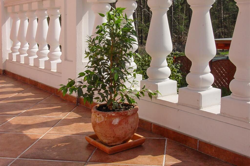 Typisch italienische Balustrade mit Kübelpflanze © Siegbert Mattheis