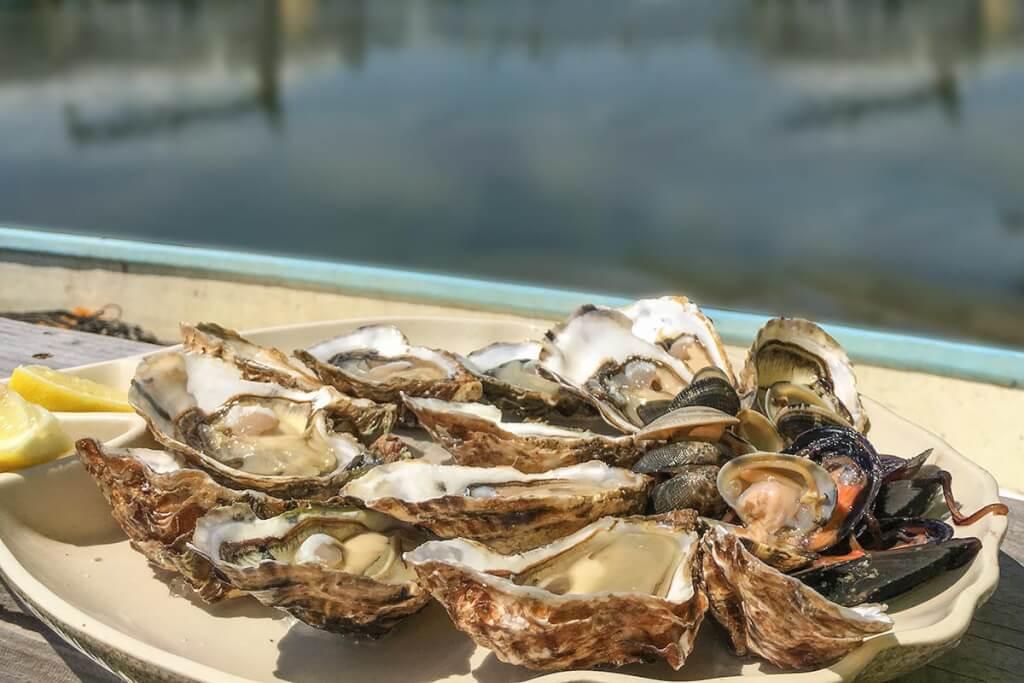Austern direkt vom Züchter © OT Leucate