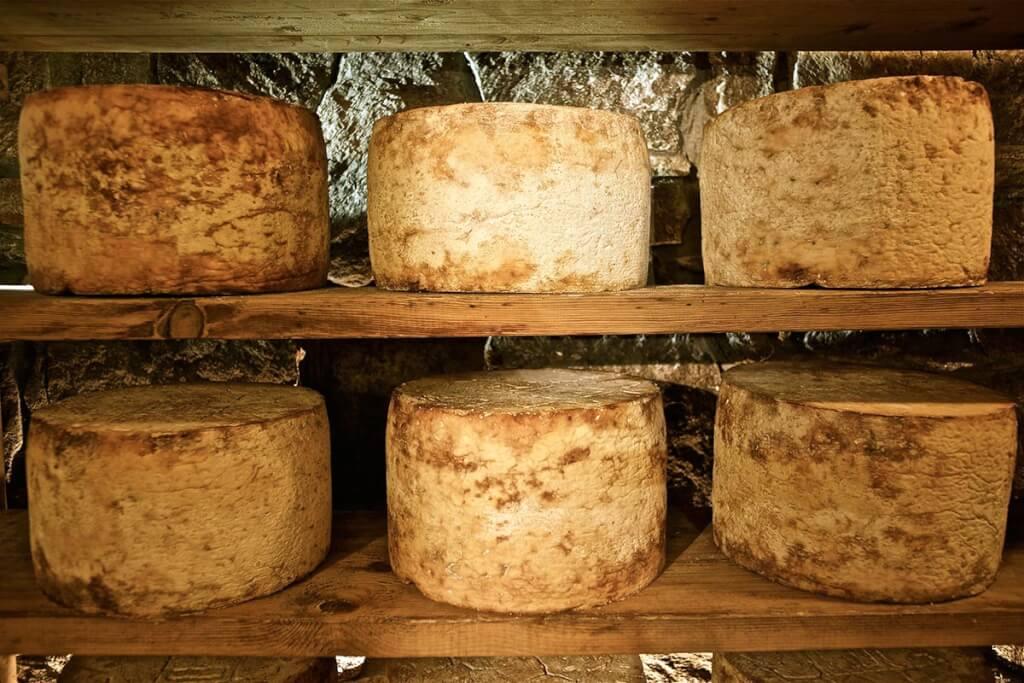 50 bis 70 Tage reift der Gorgonzola heran, bis er sein volles Aroma entfaltet © Gorgonzola Consorzio