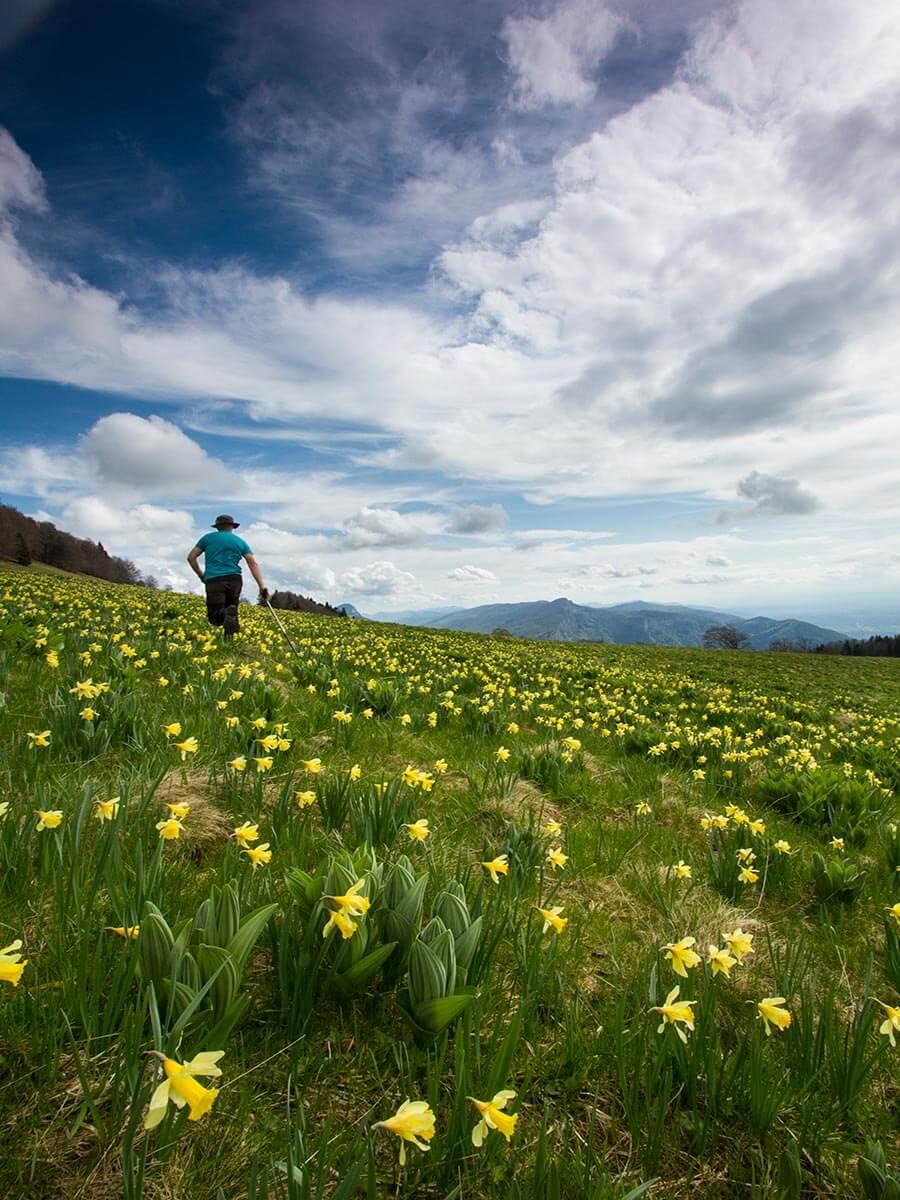Wandern in Fessole, Ecouges, © Sandrine & Matt Booth