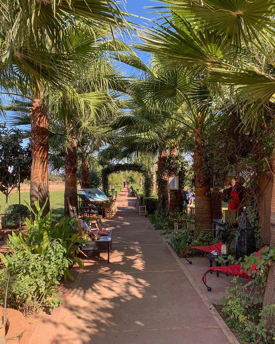 Der Eingang zu Christine Ferraris Safranparadies