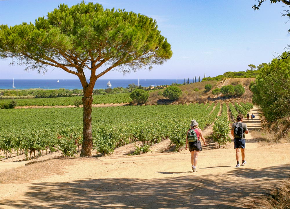 2 Wanderer am Meer vor Weinfeldern
